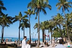 ハワイ「パイナップルストロベリーティー」その②ハワイに行くと心身ともに癒…