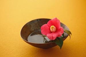 お花 「お茶室の中の唯一の命」